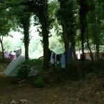 080713 Canaisa alta Campo Scout (6)